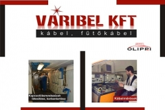Varibel flyer