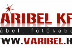 Varibel logo